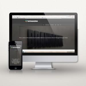 Pro-Responsive-Website